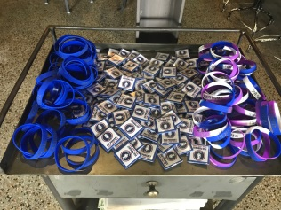 FSG Bracelet & Pin